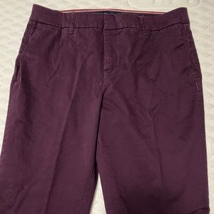 Tommy Hilfiger dark purple pants